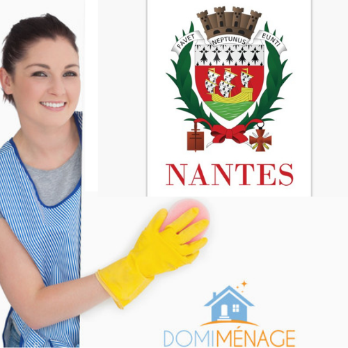 Ouverture de Domi Ménage à Nantes